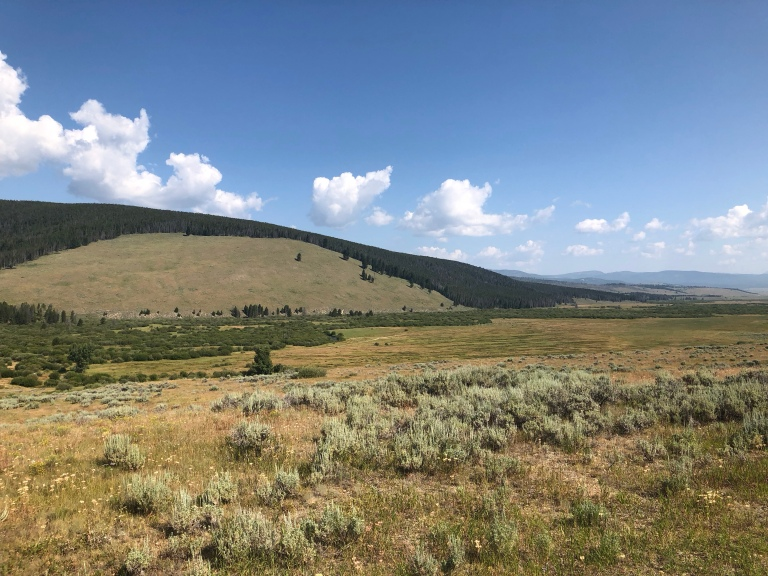 View across the battlefield area, with the grassy area where the Nez Perce were camped on the right, the heavily vegetated Big Hole River in the center, and the wooded hillside on the left.